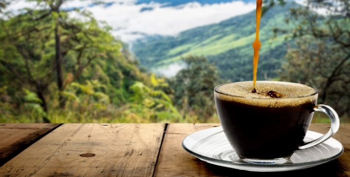 Reflections on Coffee: The Most Beautiful Coffee Quotes